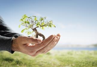 Ces métiers au cœur des préoccupations environnementales
