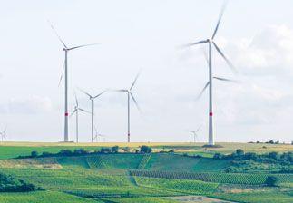 L'économie verte, un levier pour l'emploi !