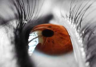 Oculariste