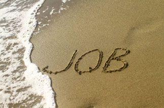 Jobs d'été atypiques